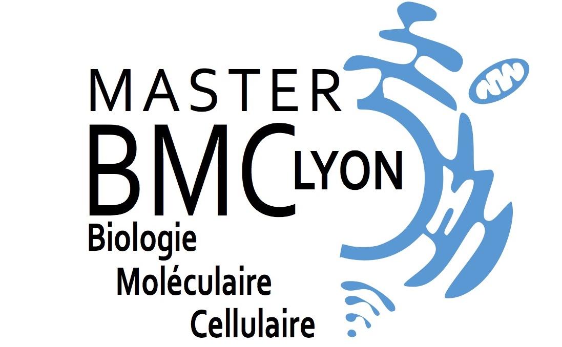 logoBMCfinal_ carré2017.jpg