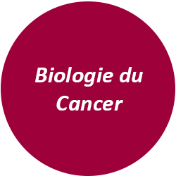 Biologie du Cancer~1.png
