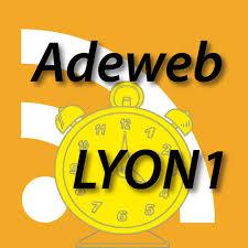 Icone adeweb Lyon.jpg