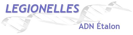 logo adn fr.jpg