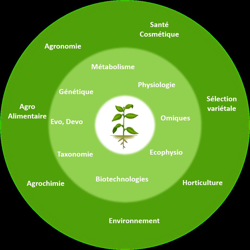 domaines et secteurs d