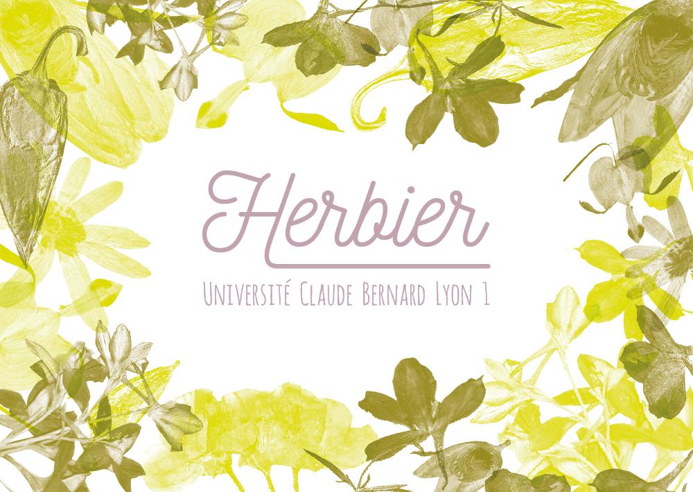 carte-3bis-herbier.jpg